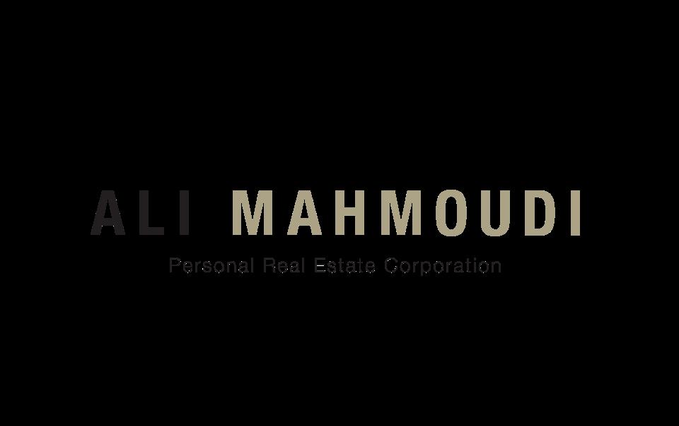 Ali Mahmoudi Realtor Branding