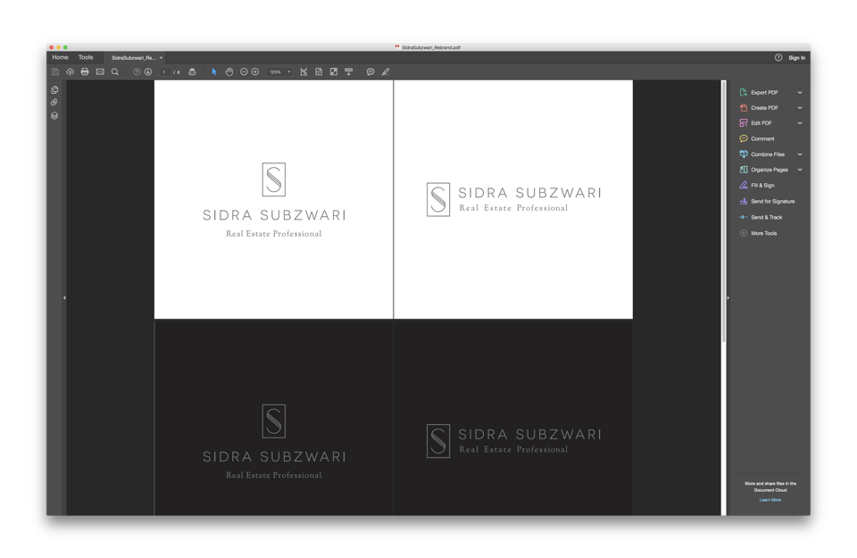 Sidra Subzwari Real estate marketing branding work using illustrator screenshot